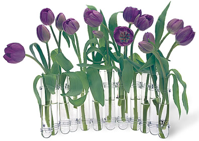 test tube vase by accent decor