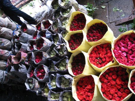 flower-mart-roses