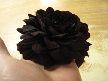 black-dahlia