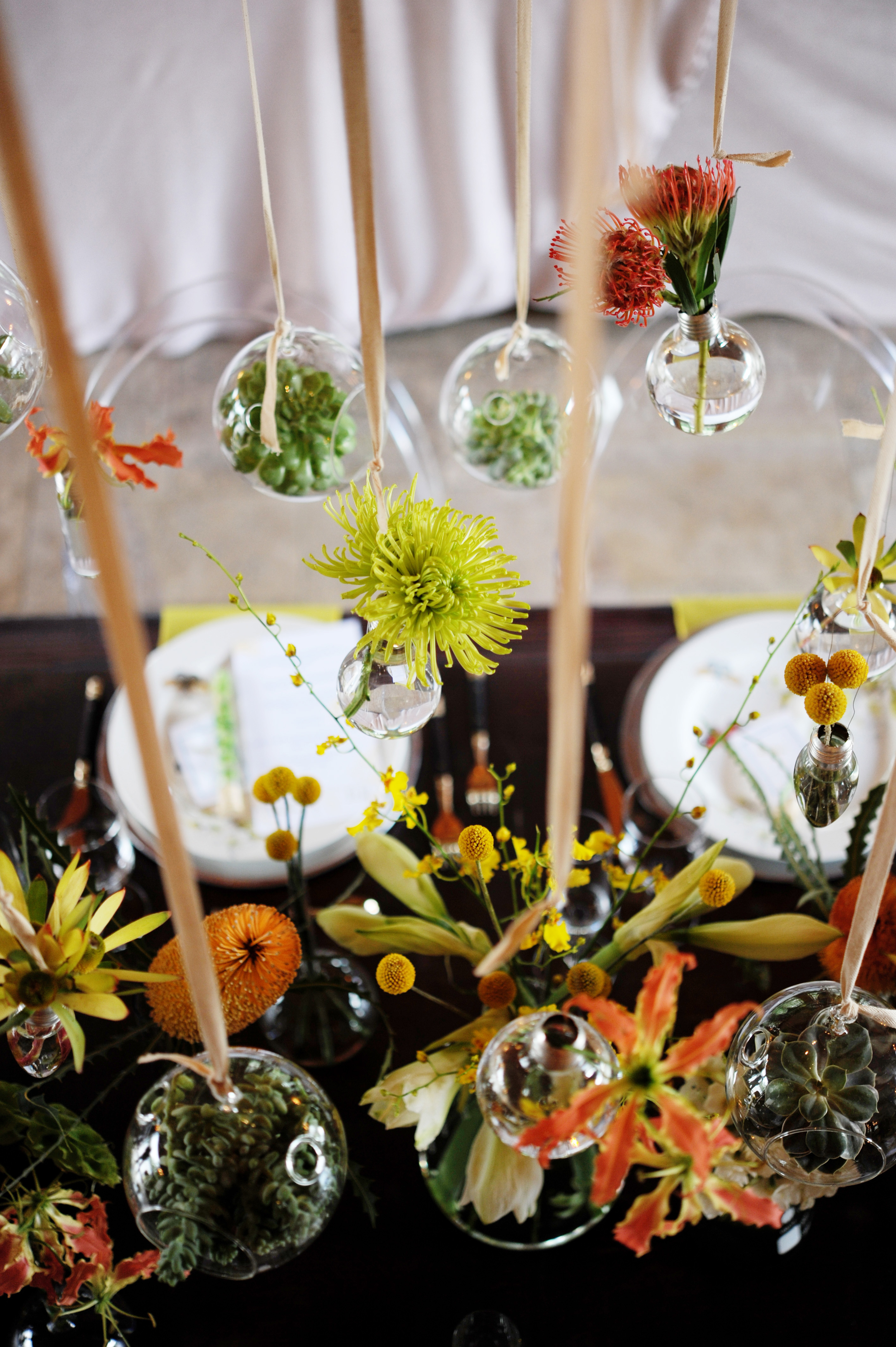 Test tube the treasured petal blog in the glass rare and wonderful botanicals reviewsmspy